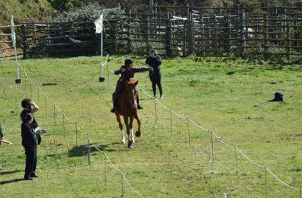 Tiro Con Arco A Cavallo: Gara